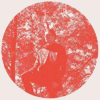 RECORD REVIEW: OWEN PALLETT – HEARTLAND