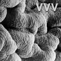 VVV SET TO RELEASE SECOND ALBUM
