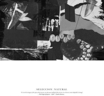 SELECCIÓN NATURAL (ESP) – SELECCIÓN NATURAL